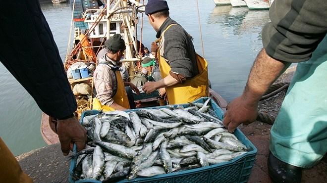 le tribunal de l'UE annule les décisions du Conseil européen sur les accords agricole et de pêche avec le Maroc