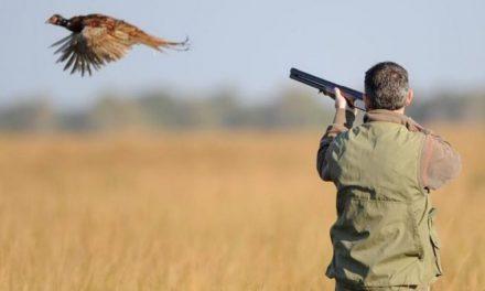 Ouverture aujourd'hui de la saison de chasse 2021-2022